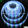 3528/5050/5630/5730 di LED Strip con CE/RoHS