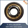 Rodamiento de rodillos cilíndrico de SKF NSK NTN