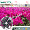 Greenhouses를 위한 에너지 절약 Ceiling Mounted Greenhouse Cooling Fan