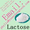 Lactose van de Zoetmiddelen van de Additieven voor levensmiddelen van de hoge Zuiverheid de Gezonde Ruwe (CAS 10039-26-6)