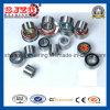 정면 Auto Wheel Hub Bearing Hub Wheel Bearing Dac40720437/Dac40720637 4RS