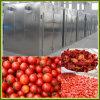Edelstahl-industrielle Nahrungsmittelentwässerungsmittel-Maschine