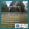 Оцинкованная сталь площади Трубы Крупный рогатый скот Забор