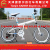 Tianjin-Gewinner 20  MTB faltende Fahrrad-moderne Auslegung
