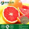 Naringina de la buena calidad el 20%~98% con las muestras libres