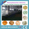 Dwt Continuous Vegetable와 Fruit Dehydration Mesh Belt Drying Machine