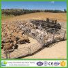 prix de panneau de bétail de 1.8*2.1m HDG