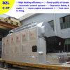 Het industriële Hout In brand gestoken Systeem van de Stoomketel 4tons (dzl4-1.25-m)