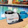 Swimmingpool-Wasser-Filter-Geräten-Swimmingpool-elektrische Pumpen