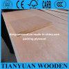 Folha da madeira compensada da embalagem do baixo preço de boa qualidade