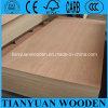 madeira compensada interior de 16mm/madeira compensada pele da porta