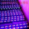 Lámpara cabida pared de 18 W RGB LED - muestra libre