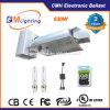 O dobro de 630 watts dos sistemas de iluminação Aka/Cdm/Lec/CMH da colheita da venda direta terminou o jogo do reator