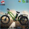 Vette Band 3 de Elektrische Driewieler van het Wiel voor Volwassene