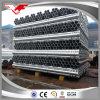 Il pollice BS1387hot di Tsx-Gsp20055 1 1/2  ha tuffato i tubi galvanizzati dell'armatura dei tubi d'acciaio
