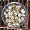 Естественные горохи Wasabi Coated желтые