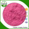 粉100%水溶性NPKの13-8-30年の肥料