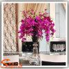 Fiore reale di plastica artificiale decorativo dell'orchidea di farfalla di tocco