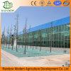 самомоднейший конструированный тип стеклянный парник Venlo для цветков