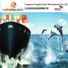 DDP Serviço de transporte marítimo da China para Los Angeles, Ca