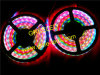 1m 60LEDs Ws2811 Ws2812 Addressable DIGITAL LED Strip