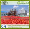 フルオートマチックのトマトのりの工場