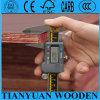 Plex/Formply/Shutterply/marinho Tego/madeira compensada do molde para o concreto