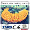 Commercial Fruit Juice Making Machine/Filling Machine