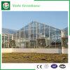 De Serre van het Glas van het Roestvrij staal van de landbouw
