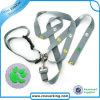 Starkes Retractable Dog Collar Leash mit Printed Logo