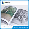 Fournisseur polychrome d'impression de brochure de qualité