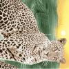 солнечний свет 100%Polyester с леопардом Pigment&Disperse напечатал ткань для комплекта постельных принадлежностей