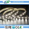 300LEDs indicatore luminoso costante della striscia SMD2835 LED della corrente LED con CE