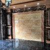 Pannelli di parete compositi di plastica di pietra resistenti alla corrosione della decorazione