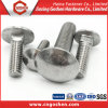 Tornillos de carro del acero inoxidable (SS304, SS304L, SS316, SS316L) DIN603