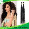 Natürliche schwarze verworrene lockige brasilianische Jungfrau menschliche Remy Haar-Perücke