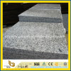 Chinese G439 Big White Flower Granite for Outdoor Floor Tile