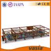Малыши 2016 конструкции Vasia новые расширяют оборудование (VS5-6190A)