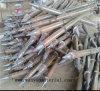 Parafuso à terra do competidor para a construção Asia@Wanyoumaterial da madeira. COM