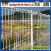 Double ad alta resistenza Circle Protection Fencing (fabbrica di anping)