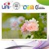 Conception 46 '' E-LED TV de mode de 2015 Uni/OEM
