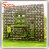 اصطناعيّة [بوإكسووود] حصير عشب مرح سياج جدار فناء زخرفة