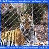 ステンレス鋼の動物園の網のステンレス鋼のフェルールロープの網
