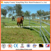 L'Australia Galvanized Cattle Yards Panels da vendere