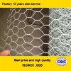Hexagonal galvanizzato Wire Mesh per Poultry Cage
