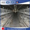 Cage chaude de poulet de vente pour le grilleur/couches