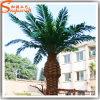 De aangepaste Kunstmatige Plastic Palmen van de Datum