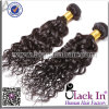 24のインチのインドの人間のRemyのカールの毛の織り方の拡張