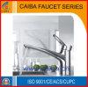 Faucet de bronze da cozinha do projeto novo (CB)