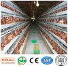 Автоматические клетки слоя оборудования птицефермы батареи